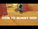 2.HOW TO BUNNY HOPHA BMX