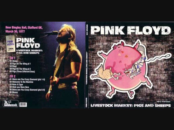 Pink Floyd Livestock Market Pigs And Sheeps Live Stafford UK March 30th 1977