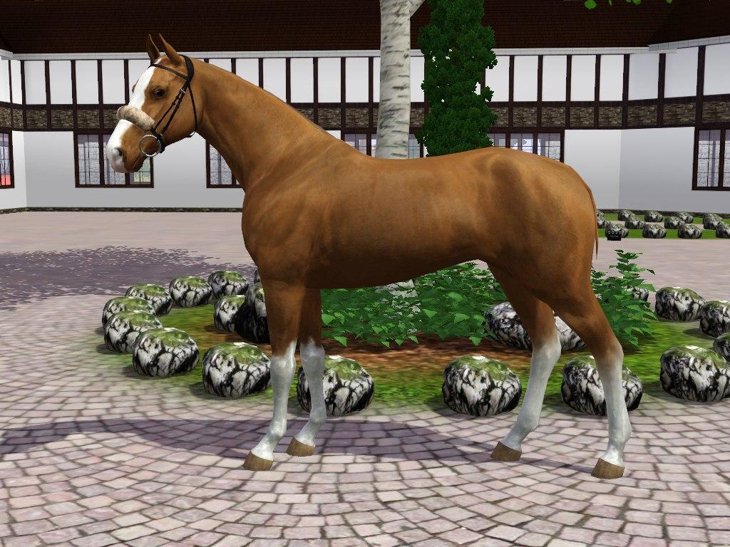 Регистрация лошадей в RHF 2 - Страница 7 0io2-GjS_tg
