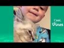 смешные приколы про котов и собак