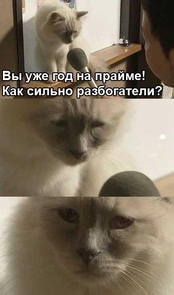 yQx6shHwtqY.jpg