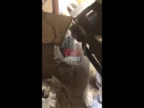 Депутата Госдумы во время обстрела ВСУ прикрывали бойцы «Пятнашки»