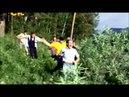Д Никулин в сериале _Пока цветет папоротник