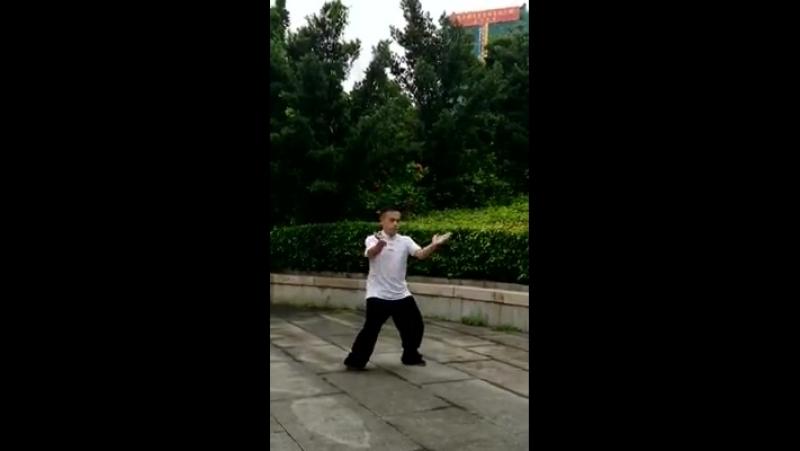 Стиль журавля Fúzhōu shí hè quán 福州食鹤拳