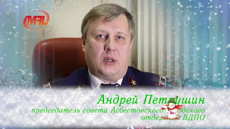 Поздравление с Новым годом Андрей Петрушин (ВДПО)