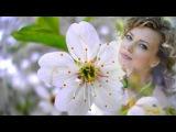 Яблони в цвету -  Евгений Мартынов