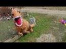 ГИГАНТСКИЙ НАДУВНОЙ КОСТЮМ ДИНОЗАВРА Битва t-rex и Бластер НЕРФ Nerf Dinosaurs GIANT LIFE SIZE