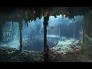 Дайверы услышали голоса призраков на дне океана. Кто живет на погибших кораблях ...