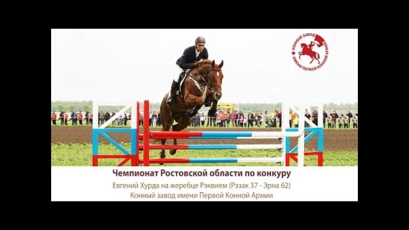Евгений Хурда на жеребце Рэквием (Рэзак 37 - Эрна 62)