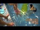 Первые в мире соревнования по грудничковому плаванию (23.11.2014)