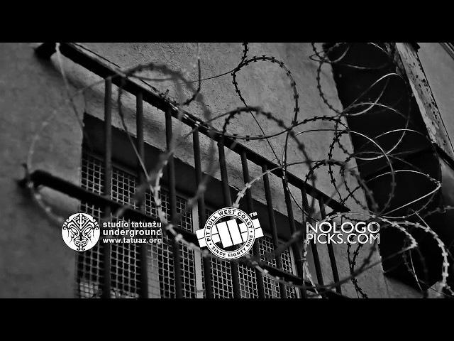 THE ANALOGS Setki Ran I Blizn (Official Music Video)