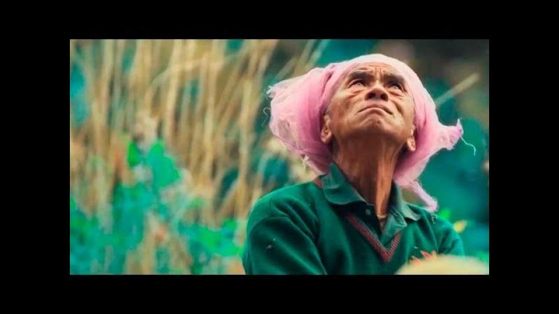Охотники за медом - Трейлер 2017 (документальный)   ENGLISH   Киномагия трейлеры