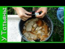 Подкормка из хлеба и йода для растений Хлебная подкормка с йодом для огурцов томатов и растений