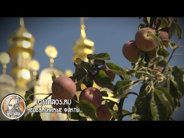 Яблочный спас Как и когда празднуют История, приметы и традиции торжества
