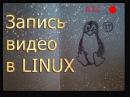Запись видео с экрана со звуком в LINUX ffmpeg