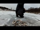 Первый лёд на реке в ЯНВАРЕ. Дубль два.2018год