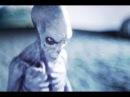 Более 82 инопланетных рас в контакте с Землей! НЛО 2018
