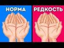 «Прочтите» Свои Ладони и Узнайте о Себе Много Нового