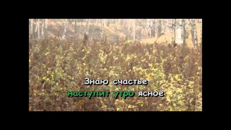 Караоке для детей Серенада Трубадура Из м ф Бременские музыканты