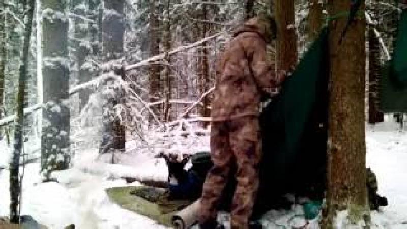 🌲Ночевка в зимнем лесу с Псом | Гамак и тент • Winter overnighter with Bulldog | Hammock Tent