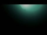 Чемпион мира freediver Guillaume Nery погружается на самое дно Голубой Дыры(Багамские острова) на одном дыхании.