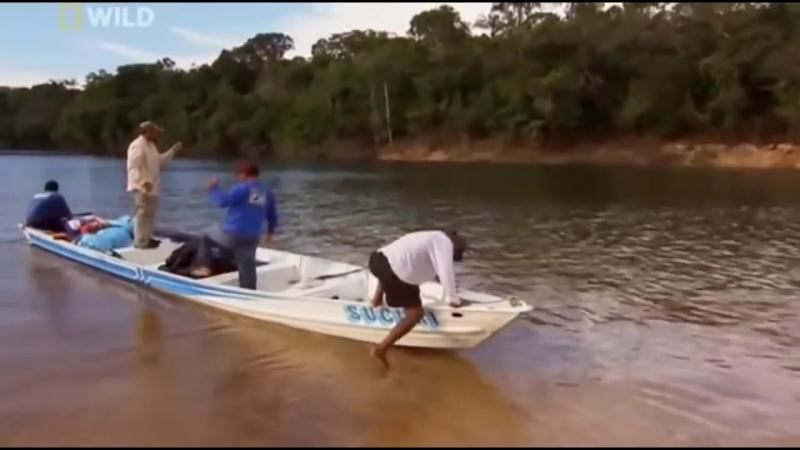 National Geographic - Речные монстры Амазонки - Документальный фильм
