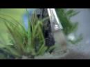 Оформляем аквариум Tetra Cascade Globe Секреты мастерства