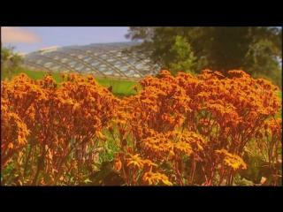 Antonio Vivaldi - The Four Seasons - Julia Fischer - Performance Edit
