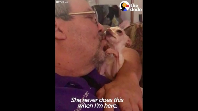 This dog doesn't want the kisses to stop