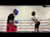 Подготовка Дмитрия Бивола в США к защите своего титула чемпиона мира по версии WBA.