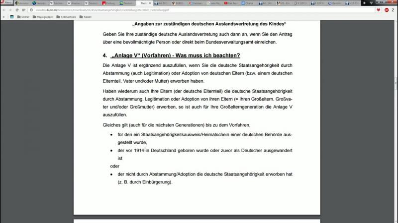 RuStAG Netzwerk Der Gelbe Schein. Staatsbürgernachweis