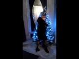 Сабина в танце
