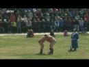 Проведении турнира по национальной борьбе «Хуреш»