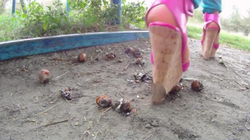 Crush snail