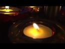 Freddie Dredd - Causing Havoc [DELETED]