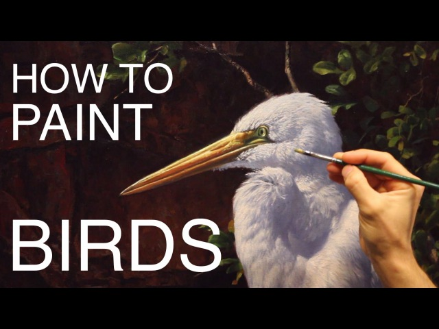 How To Paint Birds: EPISODE THREE - The Egret and Brahminy Kites
