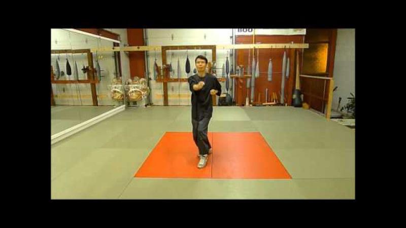 Sifu Alan Chou-Siu Lien Tao Wing Chun form with single leg (單腳小念頭)