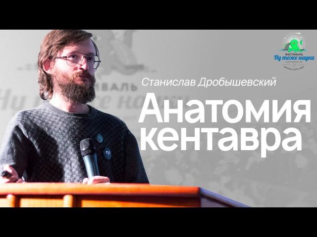 Станислав Дробышевский Анатомия Кентавра