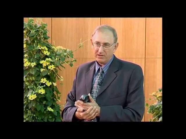 Полная Лекция о Вреде Молока - Профессор Вальтер Вайс