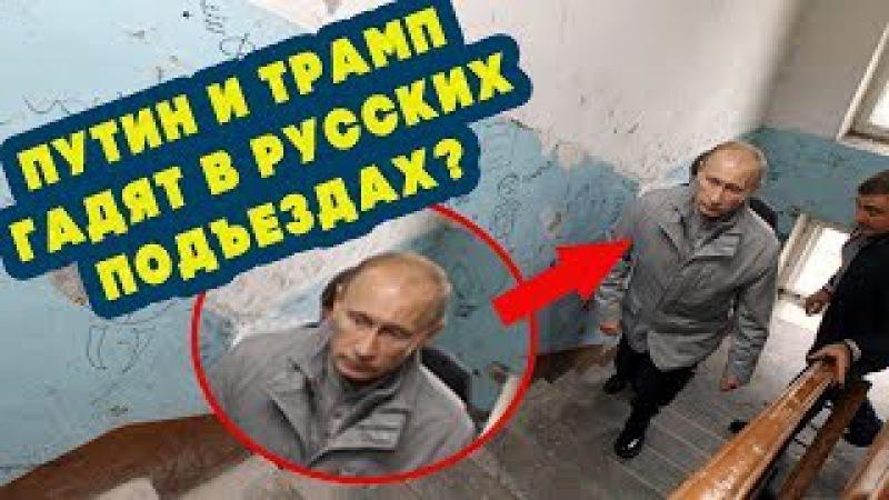 Путин и Трамп гадят в русских подъездах?