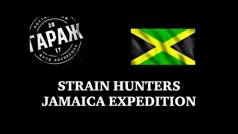Strain Hunters Jamaica Expedition русский перевод и озвучка Гараж
