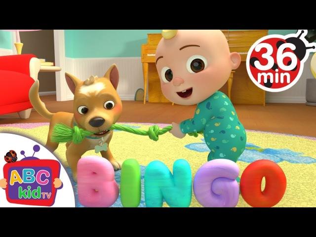 Bingo | More Nursery Rhymes Kids Songs - Cocomelon (ABCkidTV)