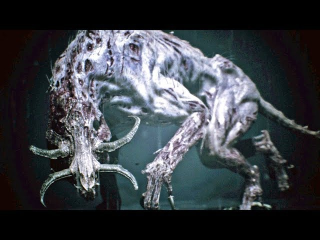 Hellblade Senua's Sacrifice 11: Demônio da Escuridão - PS4 gameplay