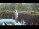 Рыбалка в Карелии- Святрека- 30 10 2017г