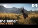 TheHunter: Call of the Wild ► Симулятор охотника на Xbox ONE ► Часть - 05
