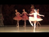 Olesya Novikova Variation of Dulcinea Don Quixote 24.12.2017