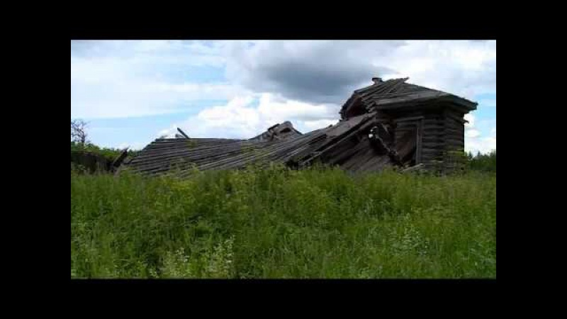 Ожизни среди лесов идиких животных рассказали жители Вытегорского района