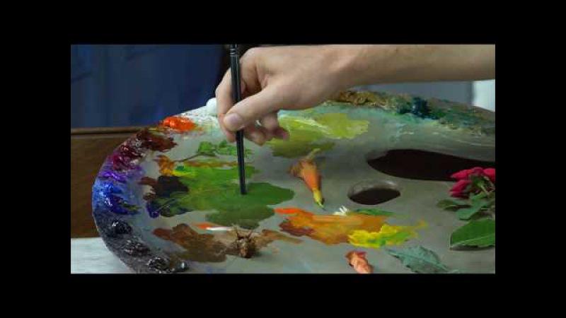 Michael Klein Color Pallete