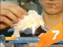 Продлевающая жизнь диета и несгораемая вата: ученые Красноярска рассказали о главных изобретениях