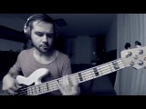 Eliane Elias - O Pato (bass cover)
